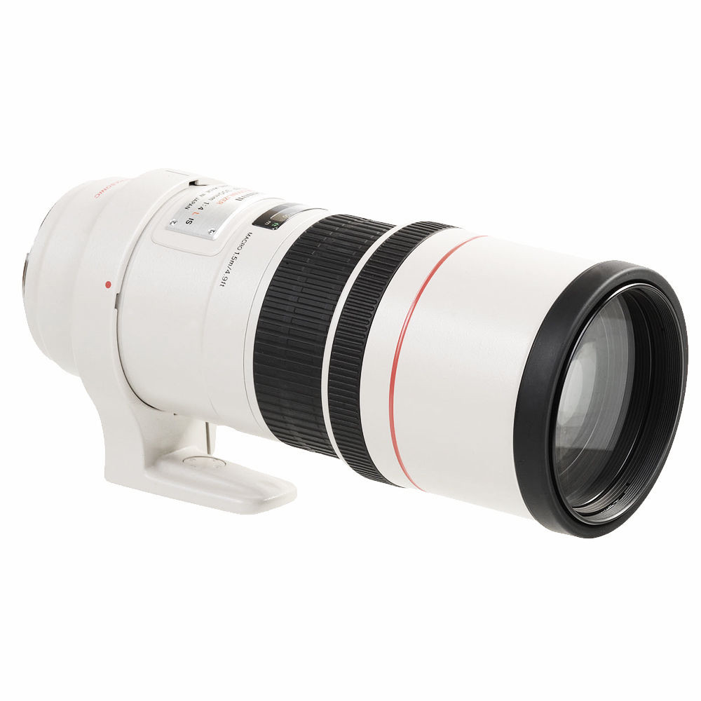 CANON EF 300 mm f/4.0 L IS