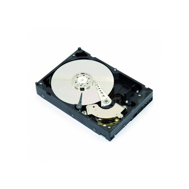 INTENSO 4 To HDD Serial ATA III d'INTENSO