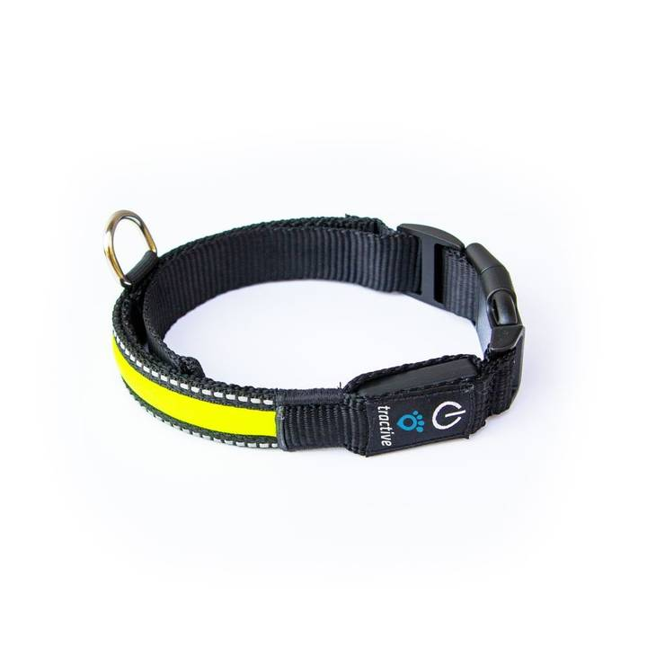 TRACTIVE LED Dog Collar Yellow S